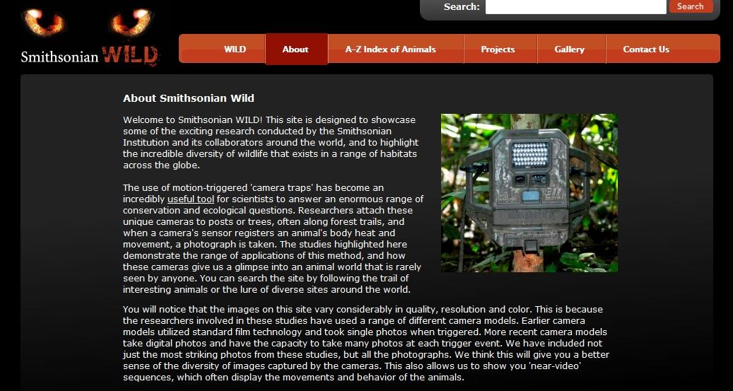 smithsonian wild